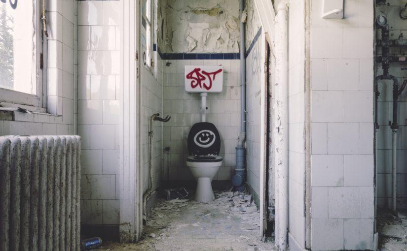 Het onmisbare toilet